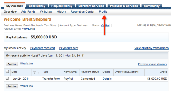 PayPal Account Overview Screenshot
